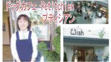 dogcafe Petitchien